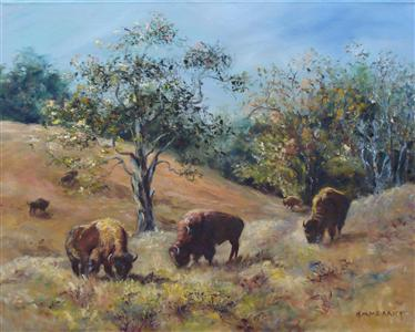 Buffalo Grazing on Woodland Farm