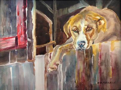 Dog in Hermitage Farm Barn Loft