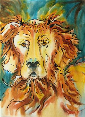 Quincy - Red Irish Setter