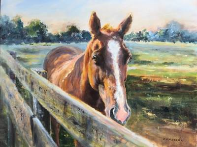 Sutherland Farm  Horse