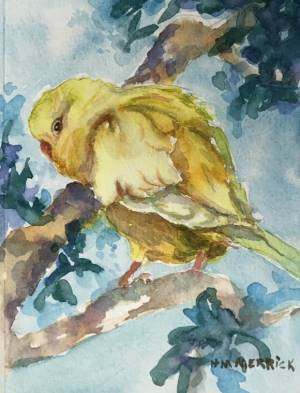 Yellow Parakeet